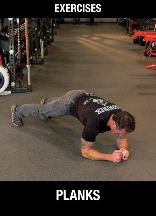 SPA Exercises - Planks